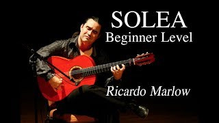 EliteGuitarist.com - Solea for Beginners Flamenco Guitar Lesson - Ricardo Marlow 1/7